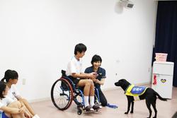 介助犬総合訓練センター
